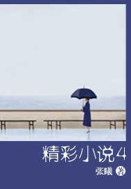 精彩小说4