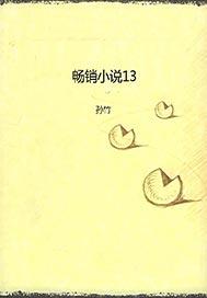 畅销小说13
