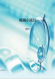 畅销小说16