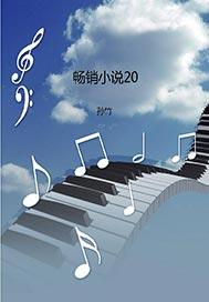 畅销小说20