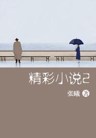 >精彩小说2