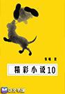 >精彩小说10