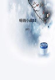 >畅销小说11