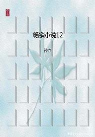 >畅销小说12