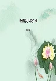 >畅销小说14