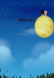 >畅销小说17