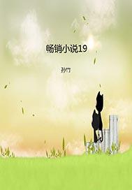 >畅销小说19