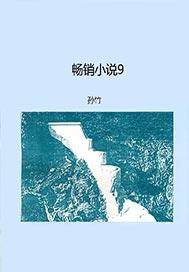 畅销图书9