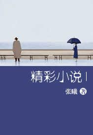 精彩小说1